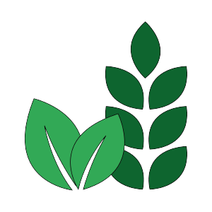 Organic, Vegan & Gluten Free أورجانيك, نباتى و بدون جلوتين